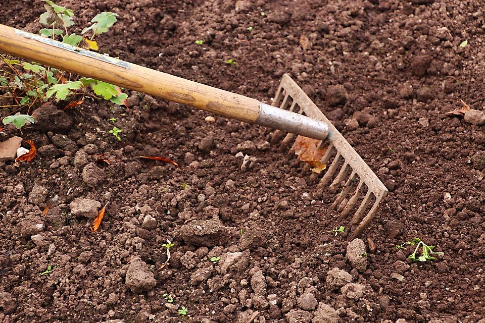 Quelques astuces pour éclairer son jardin