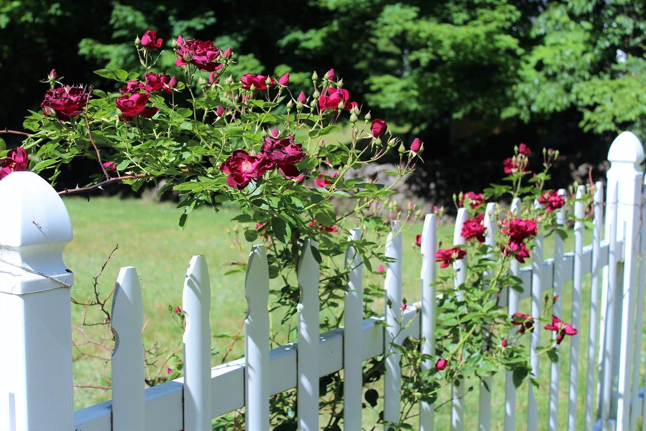 Les étapes pour poser la clôture de son jardin
