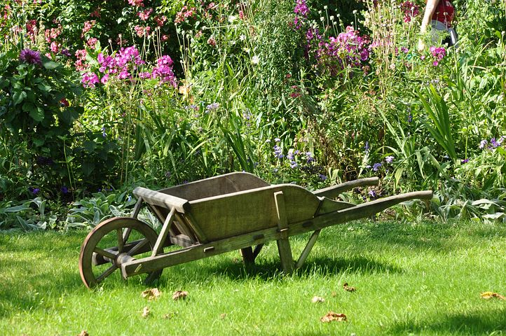 Les outils de base pour bien entretenir un jardin